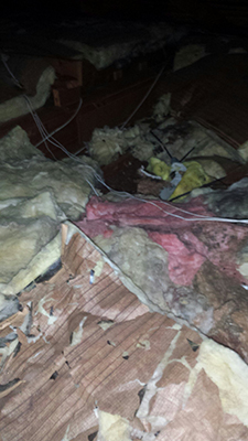 Insulation damaged by rodents.