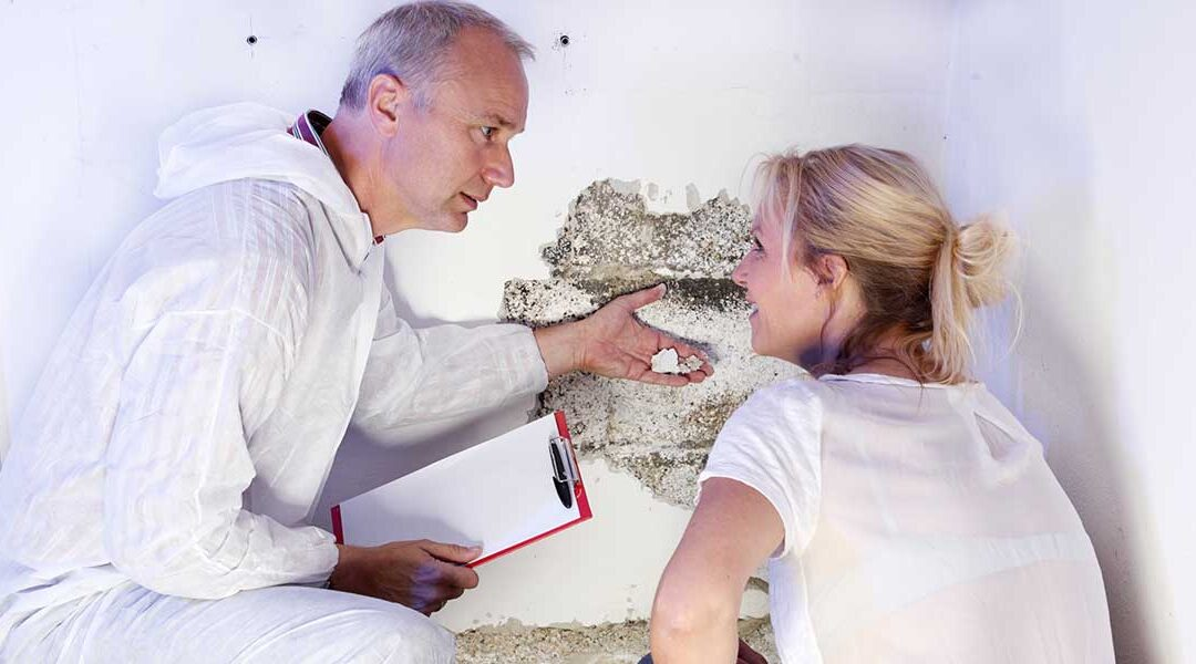 Everything to Consider When Choosing a Pest Control Service